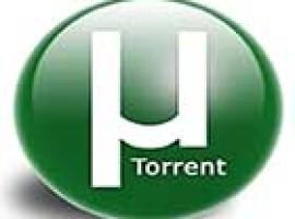 Как сохранить раздачи в Utorrent при переустановке Windows?