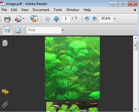 image.pdf - Adobe Reader_2014-01-02_17-00-24