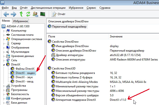 Версия DirectX 11.0 установлена в системе.