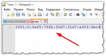 Рис. 3. скопированный IP-адрес