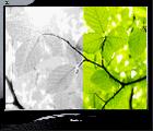 Почему не регулируется яркость на ноутбуке. Как настроить яркость экрана?