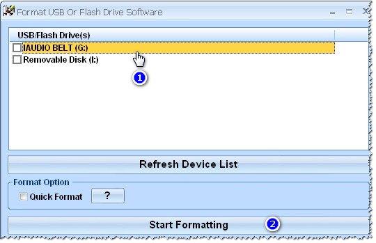 Программа Format USB Or Flash Drive Software