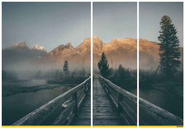 Фотография, разделенная на три части в коллаже