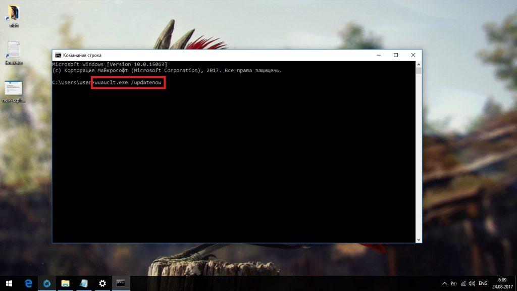 Запуск принудительного автоматического обновления Windows 10 через «Командную строку»