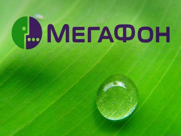 Как узнать свой тариф абоненту «Мегафон» — несколько проверенных способов