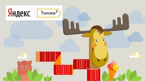 Яндекс.Толока: как зарабатывать и сколько реально можно получить денег