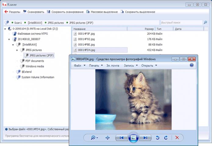 Восстановленные файлы в программе R.Saver