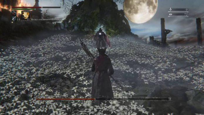 Кадр из игры Sekiro: Shadows Die Twice