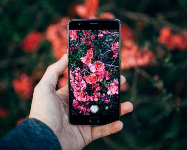 8 лучших приложений для обработки фото на Android